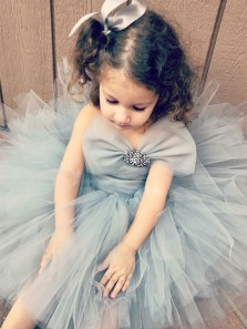 Cute Fairy Grey Tulle Flower Girl Dress, Tutu Dress, Bowknot Tutu Dress Under 100