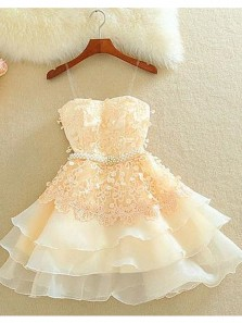 Cute A Line Sweetheart Spaghetti Straps Blush Short Homecoming Dresses with Appliques HD0813003