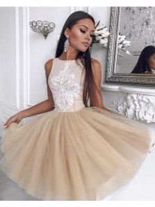 Cute A Line Scoop Tulle Champagne Short Homecoming Dress with Embroidery