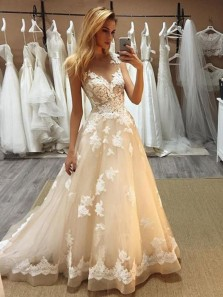 Gorgeous Ball Gown V Neck Champagne Tulle Wedding Dresses with Appliques WD19112503