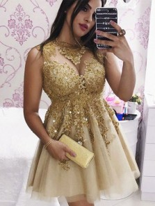 Charming A Line Round Neck Gold Tulle Beading Homecoming Dresses with Appliques