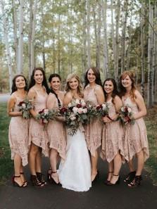 Chic A Line V Neck Straps Lace Blush Short Bridesmaid Dresses